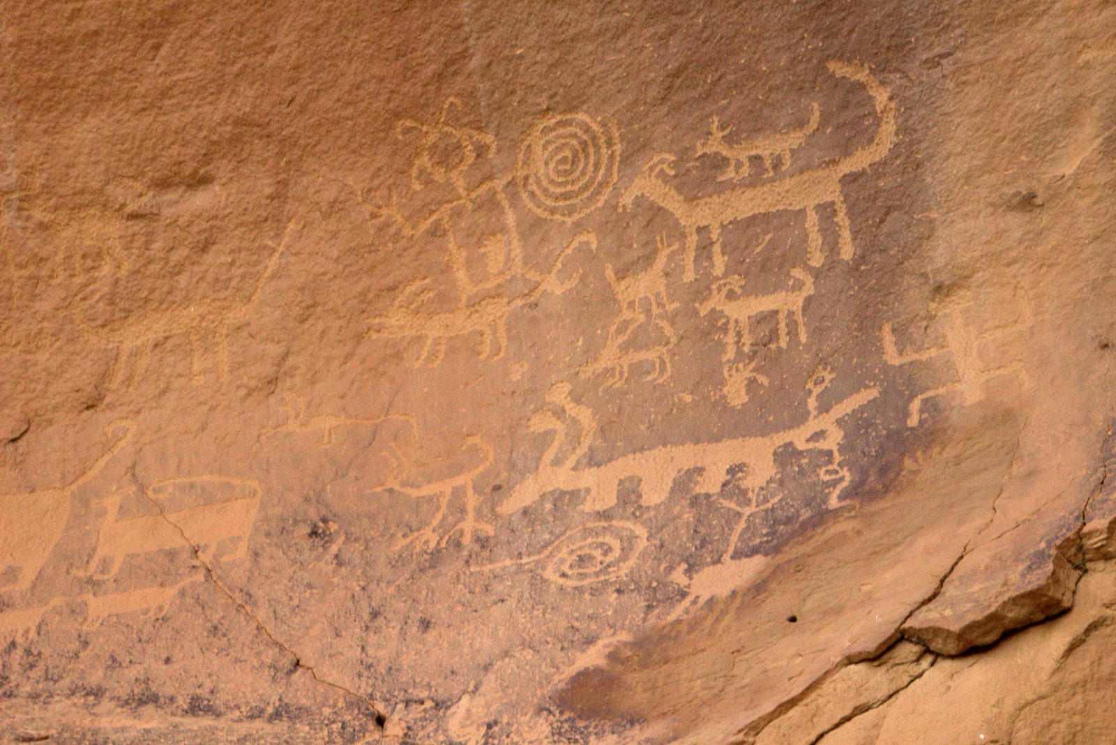 There are panels of rock painting and carvings throughout the canyon. Much  of the art is representational describing the desert animals 73de997fa